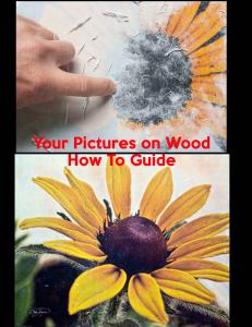 Pictures on Wood The Complete Guide
